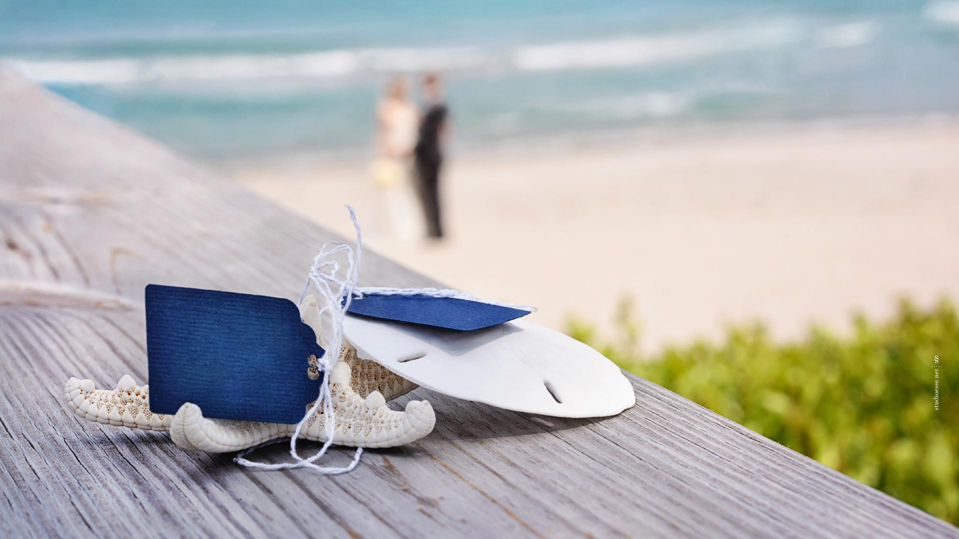 Segnaposto naturali per un matrimonio in riva al mare